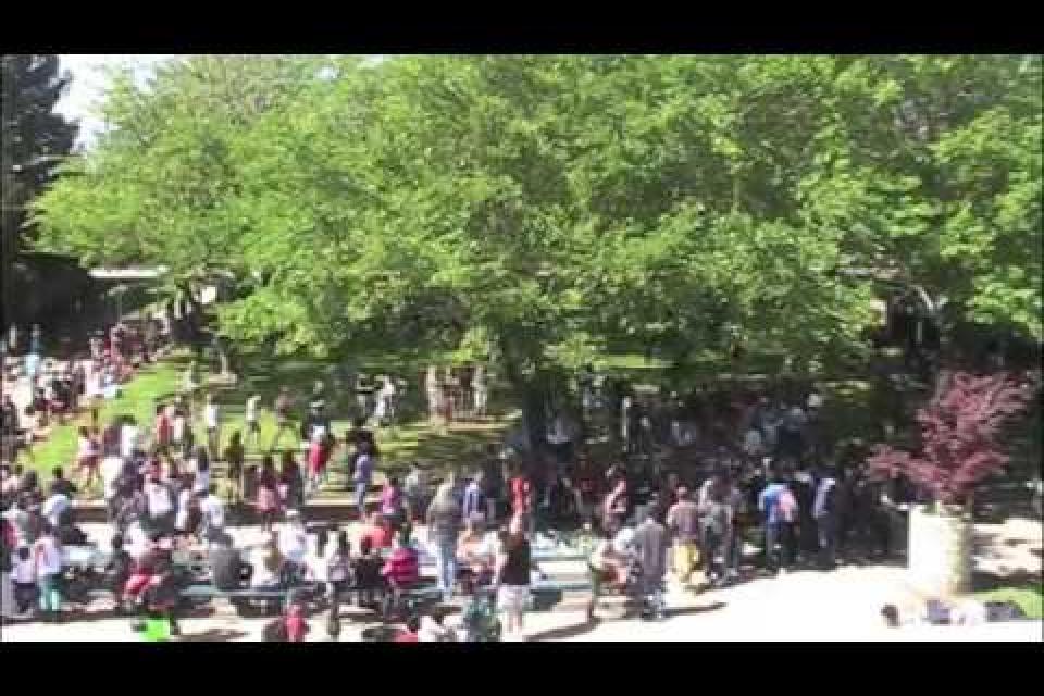 Line Dance Flash Mob Video
